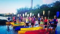 1-Hour Single or Double Kayak Hire on Golden Beach, Caloundra, Noosa & Sunshine Coast, Kayaking ...