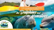 Manatee and Dolphin tour, Orlando, 4WD, ATV & Off-Road Tours