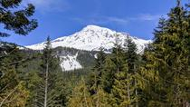 Mount Rainier National Park - Luxury Small Group Day Tour with Lunch, Seattle, Attraction Tickets