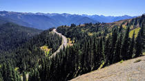 Olympic National Park - Luxury Small Group Day Tour with Lunch, Seattle, Attraction Tickets