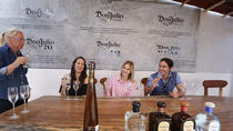 Cozumel Tequila Tasting Don Julio, Cozumel, Food Tours
