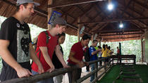 Cu Chi Tunnels Experience: Small Group Tour, Ho Chi Minh City, Half-day Tours