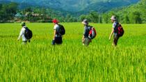 Mai Chau to Pu Luong 3-Day Tour from Hanoi, Hanoi, Multi-day Tours