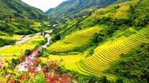 Hanoi-Sapa Trek 2 days 2 nights in Hotel with small group, Hanoi, Hiking & Camping