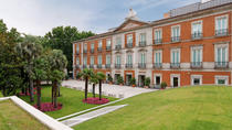 Madrid Private 4-Hour Tour of Thyssen-Bornemisya and Reina Sofia Museums, Madrid, null