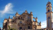Private 6-Hour Tour of Jerez de la Frontera from Cadiz, Cádiz, Private Sightseeing Tours