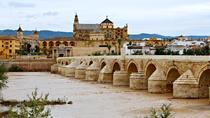 Private Guided City Tour of Cordoba, Cordoba, Historical & Heritage Tours