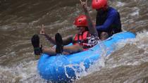 Cosmo Bali Private Tours: Ayung River Tubing, Goa Gajah Temple, Agrotourism, Bali, Tubing