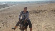 Ride a Donkey Along the West Bank from Luxor, Luxor, Day Trips