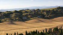 Full Day Val d'Orcia with Private Driver, Arezzo, Private Drivers