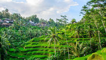 Private Sightseeing Tour: Ubud & Waterfall, Kuta, Attraction Tickets
