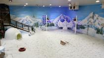 Silver Storm and Snow Storm Park Ticket, Kochi, Theme Park Tickets & Tours