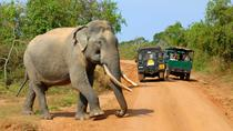 Privet One Day Udawalawe National Park Elephant Safari, Colombo, Attraction Tickets