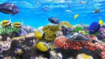 9-Hour Snorkeling and Meditation Tour Hurghada, Hurghada, Day Trips