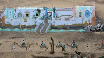 Private Tour from Aswan to Nubian Villiage by Motorboat, Aswan, Private Sightseeing Tours