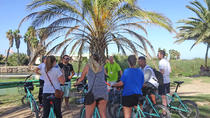 Cycling and Gastronomy in the Valencian Orchand, Valencia