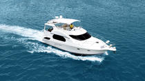 Miami Sightseeing Yacht Charter, Miami, Cultural Tours