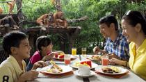 Jungle Breakfast with Orangutans at Singapore Zoo with Return Transfers, Singapore, Zoo Tickets &...