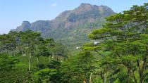 Trip to Mount Piduruthalagala the highest Mountain in Sri Lanka from NuwaraEliya, Nuwara Eliya,...