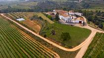 Viticulture and Wine-Tasting 3-Hour Trip from Barcelona, Barcelona, Wine Tasting & Winery Tours