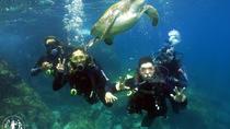 Mergulho com Cilindro em Cabo Frio RJ, Rio de Janeiro, Other Water Sports
