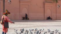 Medina of Marrakesh walking tour, Marrakech, Ports of Call Tours