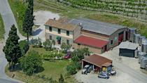 Traditional Wine Tour San Gimignano Wine Tasting - San Quirico Winery, San Gimignano, Wine Tasting...