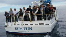 Dana Point Sportfishing, Dana Point, Fishing Charters & Tours