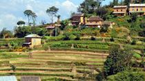 Nagarkot to Chagunaryan Day Hike from Kathmandu, Kathmandu, Private Day Trips