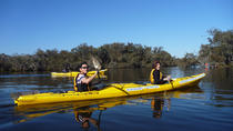 Excursion en kayak sur le fleuve Canning, Perth