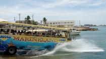Amphibious Bus City Tour with Lunch, Cayman Islands, 4WD, ATV & Off-Road Tours