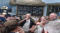 Cayman Islands Bar Hopping Tour plus Rum Distillery and Beer Factory Visit, Cayman Islands