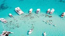 Stingray City Lunchpaket, Cayman Islands, 4WD, ATV & Off-Road Tours