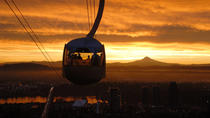 Aerial Tram and Rooftop Tour, Portland, Cultural Tours