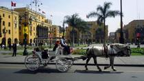 Private Lima City Tour with Larco Museum, Lima, Private Sightseeing Tours