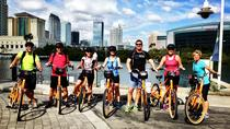 Discover Tampa By Bike, Tampa