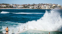 Bondi Beach Walking Tour with Optional Bondi to Bronte Coastal Walk, Sydney, Private Sightseeing ...