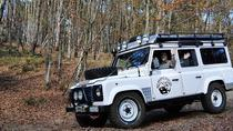 Off Road in Tuscany on board of 4X4 Land Rover Defender, Chianti, 4WD, ATV & Off-Road Tours
