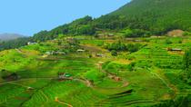 Kumano Kodo, Mie: 3 Day Ise-ji Trail & Kumano Sanzan Tour, Mie, Multi-day Tours