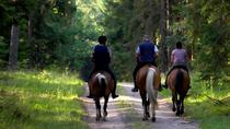 2-Day Horse Riding Tour in Sredna Gora from Plovdiv, Plovdiv