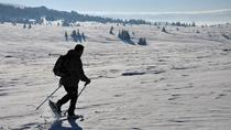 One day hiking with snowshoes on Vitosha, Sofia, Hiking & Camping