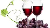 Varna: Become a Winemaker Experience, Varna, Wine Tasting & Winery Tours