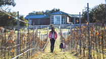 3 Wines, 3 Cheeses, 3 Grazing Stations, Hobart, Food Tours