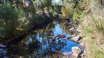 Wine and Nature tour, Hobart, City Tours