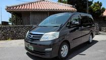 Explore All Okinawa (Northern & Southern) using Private Toyota Alphard, Okinawa, Day Trips