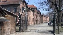 Full-Day Auschwitz and Birkenau Tour from Krakow with Private Transfer, Krakow, Private Day Trips