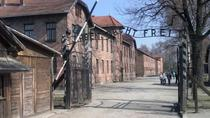 Private 7 hour Tour of Auschwitz- Birkenau from Krakow , Krakow, Private Day Trips