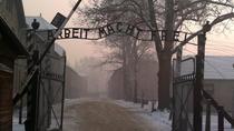 Small-Group Tour to Auschwitz-Birkenau Museum from Krakow, Oswiecim, Day Trips