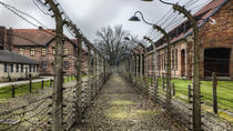 Wheelchair Accessible Auschwitz-Birkenau Memorial from Krakow, Gdansk, Cultural Tours