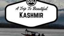 A Trip to Kashmir, Srinagar, Cultural Tours